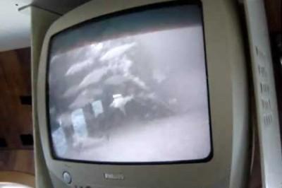 torsk filmet på vrag med undervandskamera.