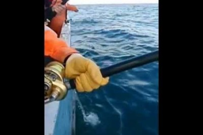 Fisketur uge 6